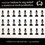 Voices in my mind (masters at work)