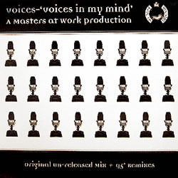 Voices in my mind